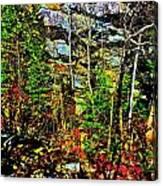 Hyper Grafton 11 Canvas Print