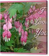 I Love You Greeting Card - Floral Bleeding Heart Canvas Print