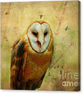 I Will Make You Smile Owl Canvas Print