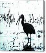 Ibis By Pintail Nature Drive Cameron Prairie Nwr La Canvas Print