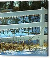 Ice Fence Canvas Print