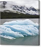 Iceberg In Endicott Arm, Inside Canvas Print