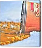 Iced Cap Canvas Print