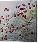Iced Holly Canvas Print