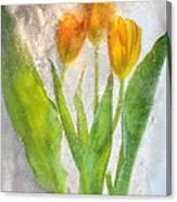 Icescape 1 Canvas Print