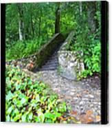 Ichetucknee Stairway Canvas Print