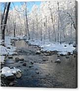 Icing On The Trees Canvas Print