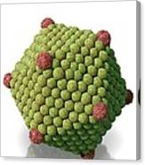 Icosahedral Virus Particle, Artwork Canvas Print
