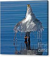 Icy Blue Twist Canvas Print