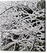 Icy Dreams Canvas Print