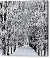 Icy Gateway Canvas Print