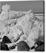 Icy Shoreline In Black And White Canvas Print