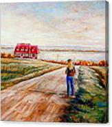 Ile D'orleans Road To The Red Gabled House Quebec Maritime Landscape Canvas Print