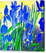 In The Iris Bed Canvas Print