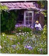 In The Iris Garden Canvas Print