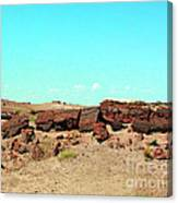 In The Petrified Forest In Arizona Canvas Print