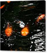 Incoming Koi Missiles Canvas Print