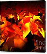 Indian Summer Sparkle Canvas Print
