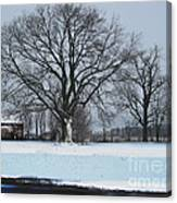 Indiana Winter Canvas Print