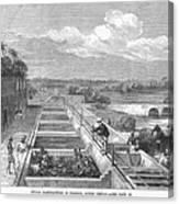 Indigo Manufacture, 1869 Canvas Print