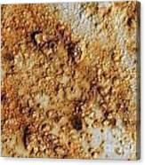 Industrial Corrosion Canvas Print