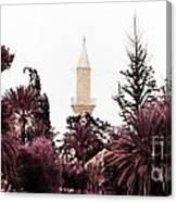 infrared Hala Sultan Tekke Canvas Print