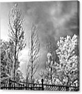 Infrared Summer Storm 2 Canvas Print