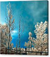 Infrared Summer Storm Canvas Print