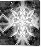 Intelligent Design Bw 2 Canvas Print