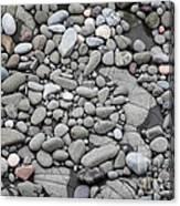 Intertidal Shore Canvas Print