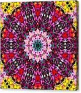 Introspection 3 Canvas Print