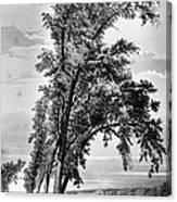 Iowa: Council Bluffs, 1855 Canvas Print