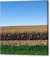 Iowa Landscape Iv Canvas Print