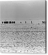 Iraqi Soldiers Surrender To The 1st Canvas Print