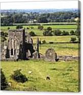 Ireland 0005 Canvas Print
