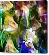 Iris 52 Canvas Print