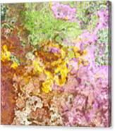 Iris Abstract I Canvas Print