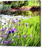 Iris And Water Canvas Print