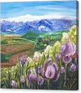 Iris Hill Watches Hermon Canvas Print