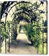 Irish Archway Canvas Print