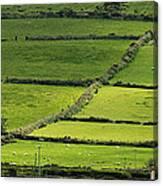 Irish Countryside Near Valenica Island Canvas Print