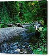 Iron Creek  Canvas Print