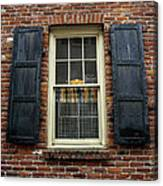 Iron Shutters Canvas Print