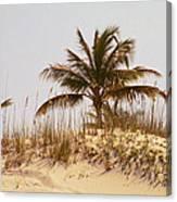 Island Sand Dune Canvas Print