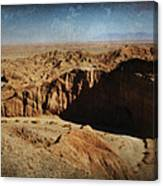 It's A Big Desert Out There Canvas Print