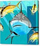 Jackbully Canvas Print