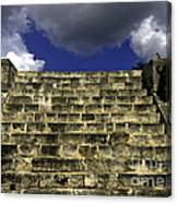 Jaguar Stairway Two Canvas Print