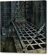 Jailbird Cage  Canvas Print