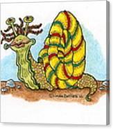 Jamaican Snail Canvas Print
