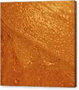 Jammer Tangerine Abstract Canvas Print